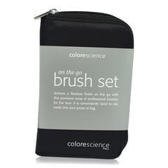 Colorescience Brush kit